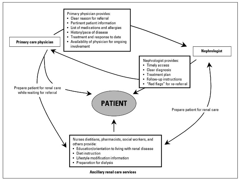 Optimizing Chronic Kidney Disease Care The Primary Specialty Care Interface British Columbia Medical Journal