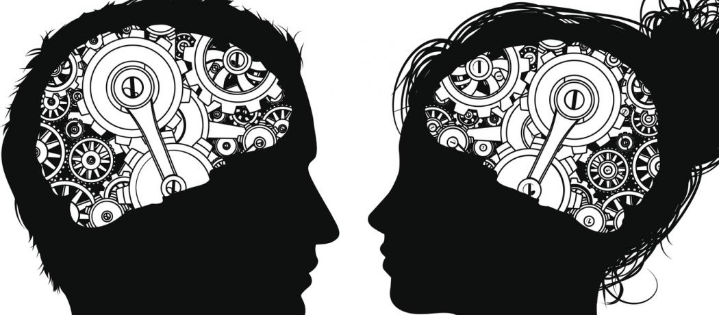 Book review: Gender and our brain