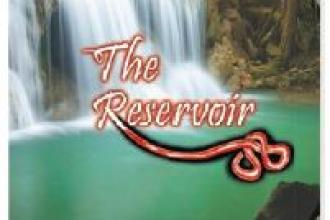 Book review: The Reservoir
