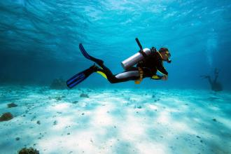 A scuba diver swims in the water