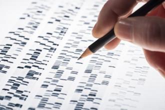 Gel electrophoresis for DNA analysis