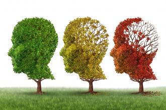 Therapeutic approaches in the management of behavioral and psychological symptoms of dementia in the elderly
