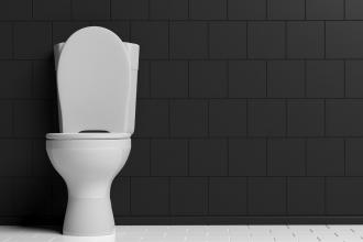 Aiming for the toilet seat: Where do patients really pick up bacteria?