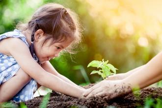 Healthy soil, healthy population