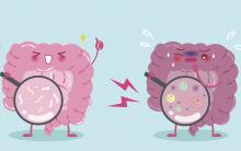 Evolutionary medicine: Does our microbiome hold the answers?