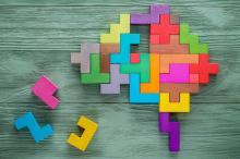 multicoloured-bricks-makeup-brain