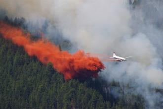 Forest fires: A clinician primer