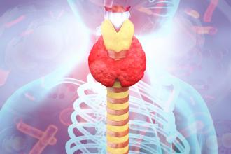 Screening for thyroid dysfunction in patients without symptoms: Don't check that box routinely