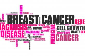 A critique of the Breast Cancer Prevention and Risk Assessment Clinic