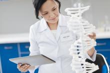 Biologist studying a DNA strand model
