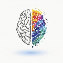 Dual diagnosis illustration of the brain - one hemisphere is colourful the other not