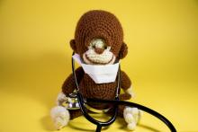 Medical Monkey stuffed toy panoramic. Cute plush brown monkey wearing a hospital mask and doctors stethoscope.
