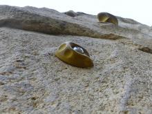 Rock climbing wall, onward and upward